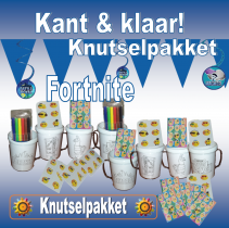 gallery/fortnite knutselpakket